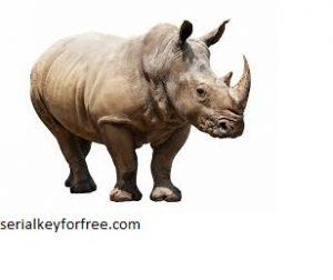 Rhinoceros 7.5 Crack